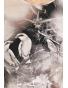 K019-516 - dámská halenka ptáci a motýli